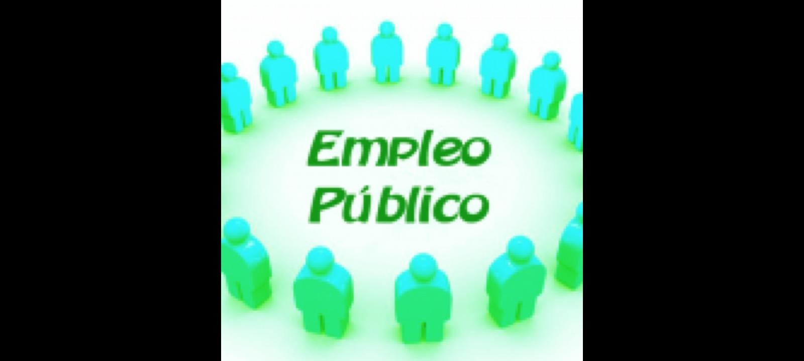 Conversión en plazas estructurales de las plazas programas temporales de las Oficinas de Empleo y Consejería de Bienestar social